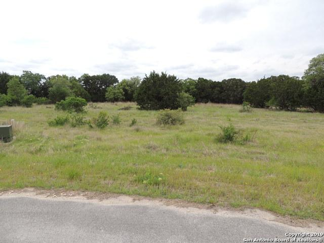 1042 Bluewater Pl, Spring Branch, TX 78070 (MLS #1377589) :: Alexis Weigand Real Estate Group