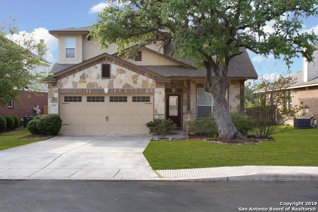 23007 Cardigan Chase, San Antonio, TX 78260 (MLS #1377646) :: Alexis Weigand Real Estate Group