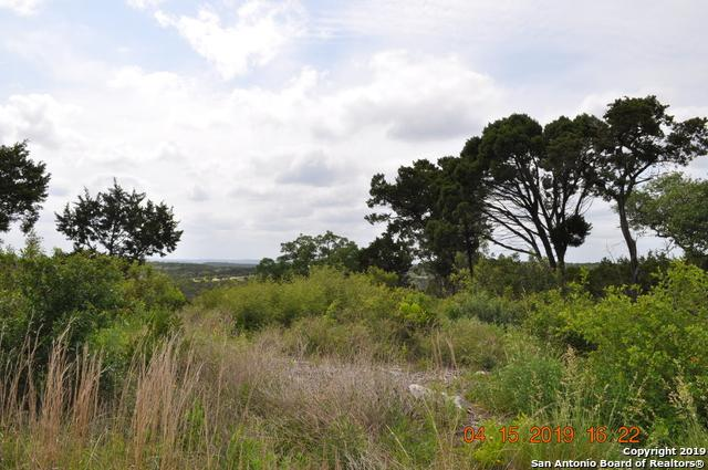 2771 Private Road, Mico, TX 78056 (MLS #1377680) :: Alexis Weigand Real Estate Group