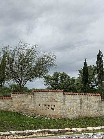 1320 Trentino, New Braunfels, TX 78132 (MLS #1377730) :: Alexis Weigand Real Estate Group
