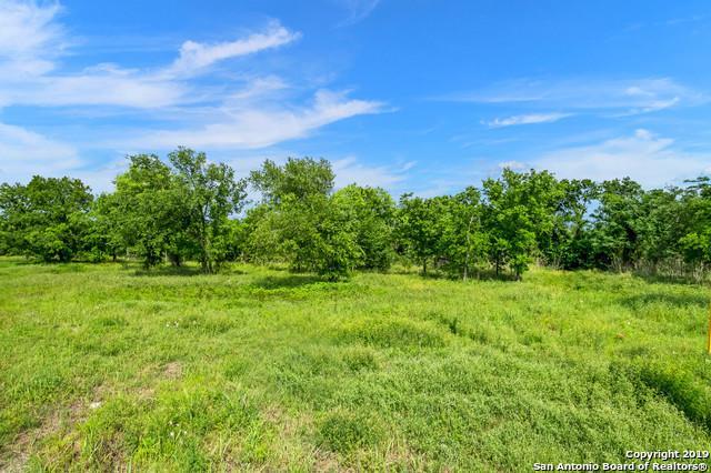 128 Colibro Creek Dr, La Vernia, TX 78121 (MLS #1377750) :: Alexis Weigand Real Estate Group