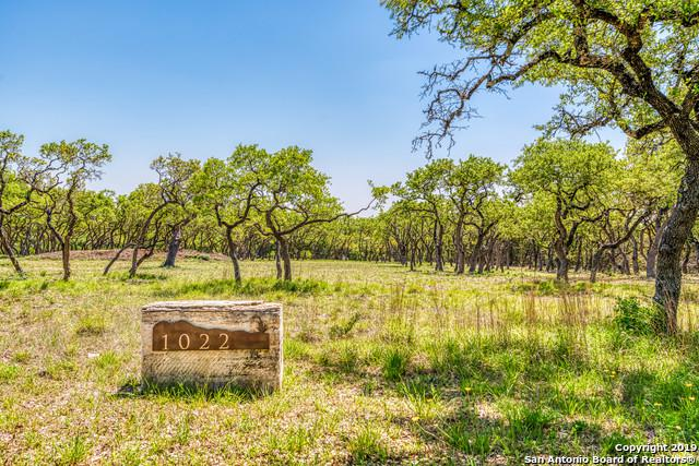 1022 Monteola, Bulverde, TX 78163 (MLS #1377810) :: Alexis Weigand Real Estate Group