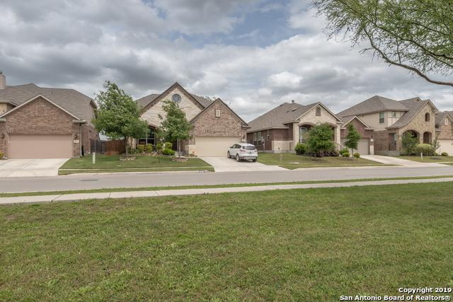 637 Bison Ln, Cibolo, TX 78108 (MLS #1377968) :: River City Group