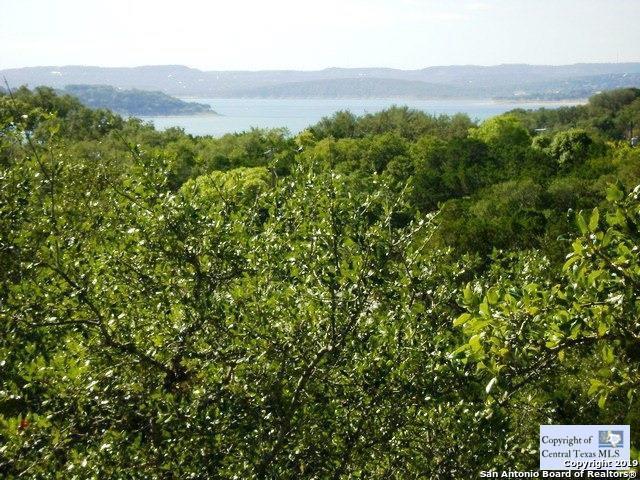 1436 Hallmark, Canyon Lake, TX 78133 (MLS #1378056) :: Alexis Weigand Real Estate Group