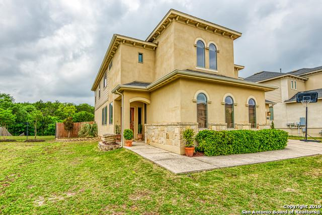 23503 Woodlawn Ridge, San Antonio, TX 78259 (MLS #1378295) :: Erin Caraway Group