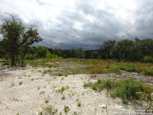 LOT 11, BLOCK 3 Pr 2771, Mico, TX 78056 (MLS #1378442) :: Erin Caraway Group