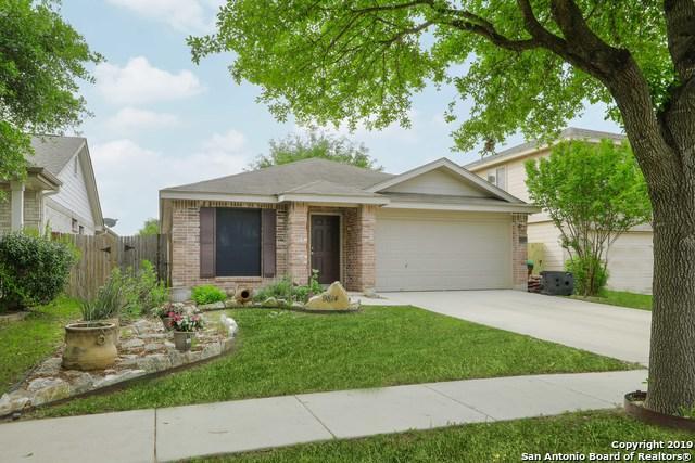 9814 Spring Beauty, San Antonio, TX 78254 (MLS #1378465) :: Tom White Group