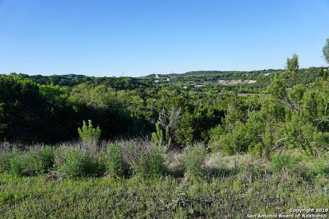 632 Angelica Vista, Canyon Lake, TX 78133 (MLS #1378513) :: Neal & Neal Team