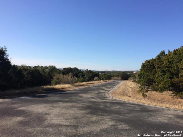 120 Sierra Way, Canyon Lake, TX 78133 (MLS #1378554) :: Erin Caraway Group