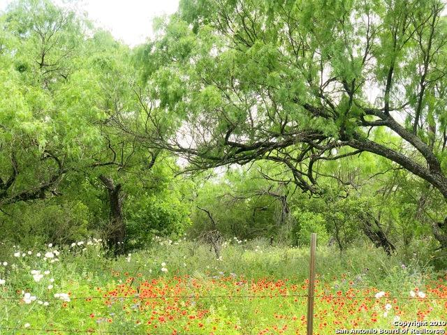904 County Road 7711, Devine, TX 78016 (MLS #1378597) :: Santos and Sandberg