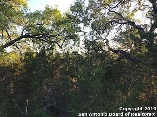 BLK 13 LT 14 Old Camp, Bandera, TX 78003 (MLS #1378956) :: The Gradiz Group