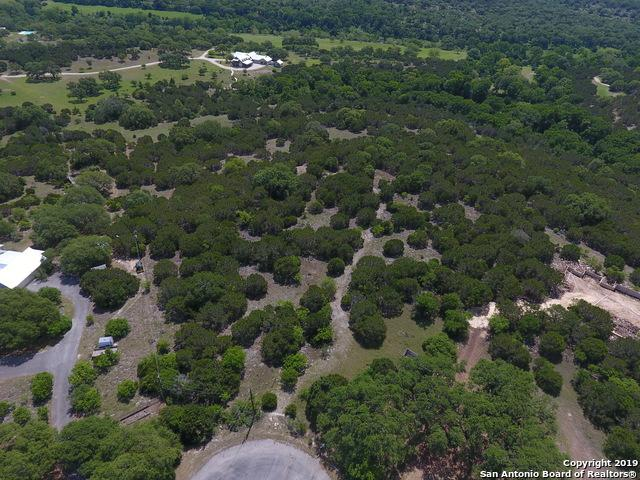 116 Shady Ridge Dr, Boerne, TX 78006 (MLS #1378993) :: Alexis Weigand Real Estate Group