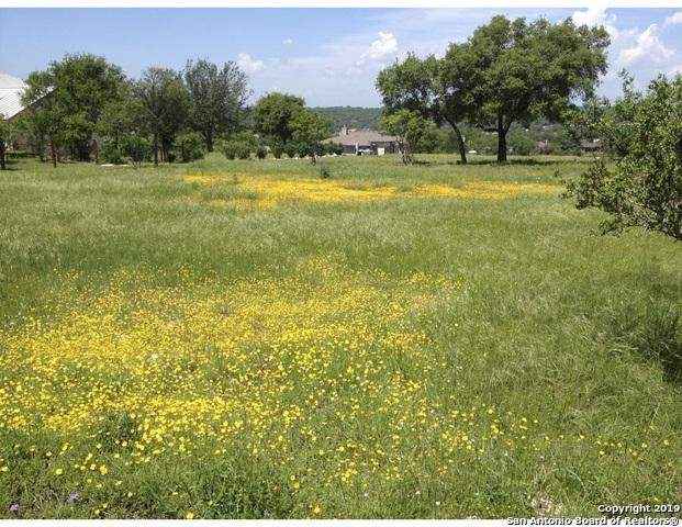 1508 Decanter Dr, New Braunfels, TX 78132 (MLS #1379214) :: Vivid Realty