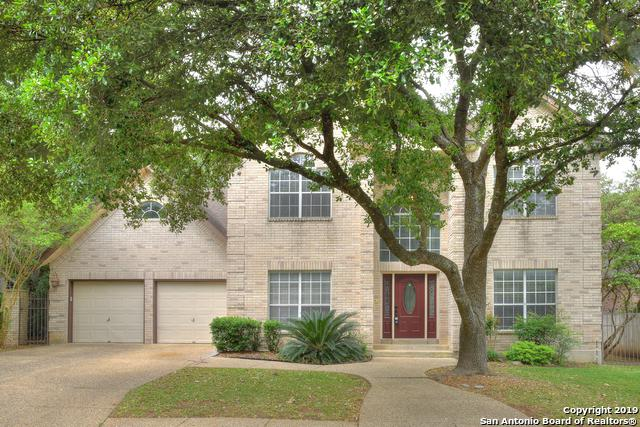 17211 Fawn Cloud Ln, San Antonio, TX 78248 (MLS #1379275) :: Tom White Group
