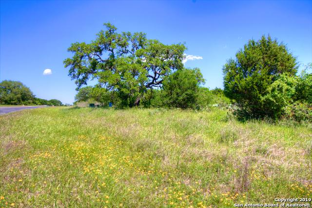887 Oak Bluff Trail, New Braunfels, TX 78132 (MLS #1379624) :: Neal & Neal Team