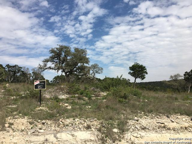 LOT 1 BLK 3 Pr 2771, Mico, TX 78056 (MLS #1379939) :: Erin Caraway Group