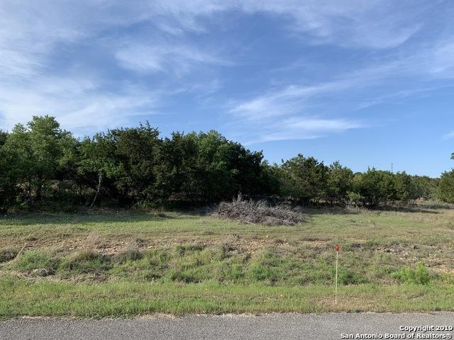 744 Stallion Estates Dr, Spring Branch, TX 78070 (MLS #1380183) :: Erin Caraway Group