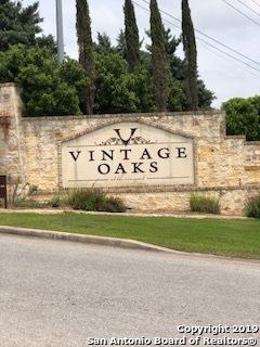 1514 Syrah Circle, New Braunfels, TX 78132 (MLS #1380888) :: Tom White Group