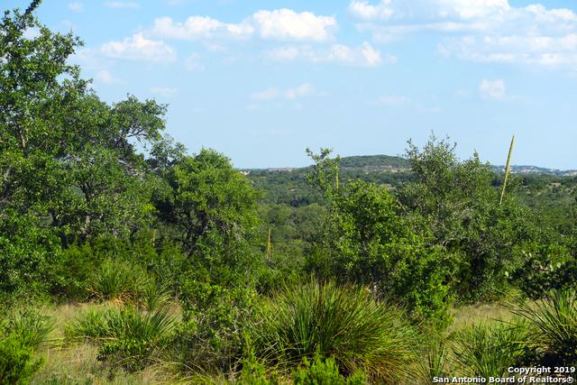 0 Toutant Beauregard, Boerne, TX 78006 (MLS #1381403) :: Alexis Weigand Real Estate Group