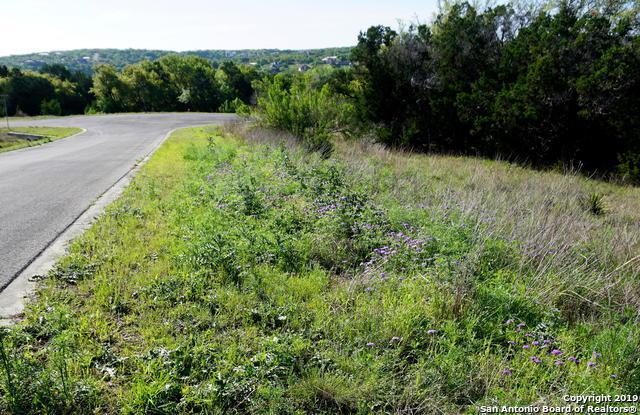 220 Sendera Way, Canyon Lake, TX 78133 (MLS #1381581) :: Erin Caraway Group