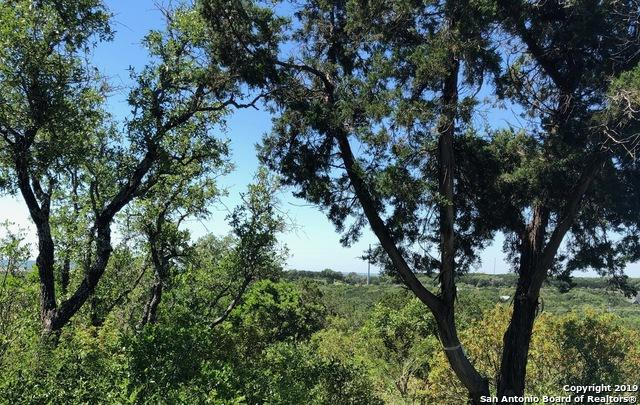 LOT 31 County Road 2801 West, Mico, TX 78056 (MLS #1381635) :: Erin Caraway Group