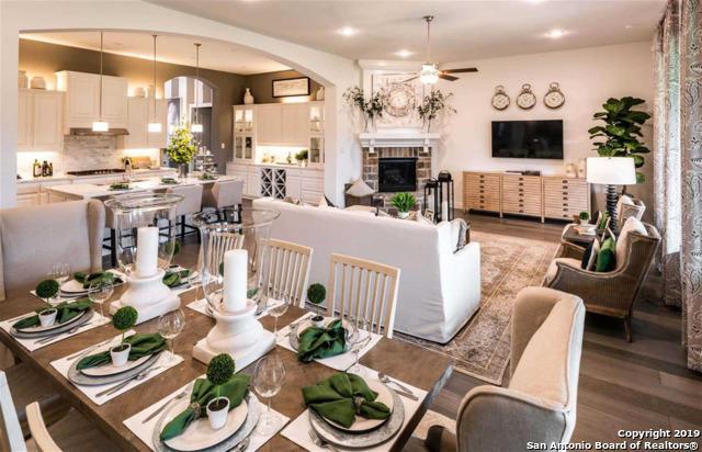 28615 Benedikt Path, Boerne, TX 78006 (MLS #1381673) :: Alexis Weigand Real Estate Group