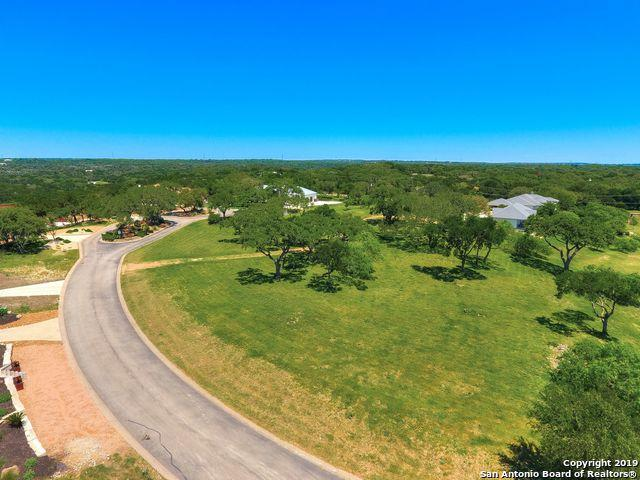 1734 Antigua Cove, New Braunfels, TX 78132 (MLS #1381855) :: Alexis Weigand Real Estate Group