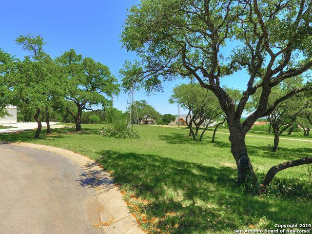 1742 Antigua Cove, New Braunfels, TX 78132 (MLS #1381860) :: Alexis Weigand Real Estate Group