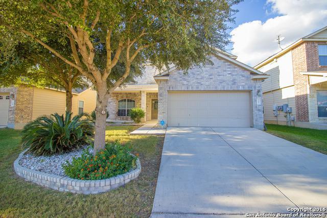 132 Clapboard Run, Cibolo, TX 78108 (MLS #1382017) :: Alexis Weigand Real Estate Group