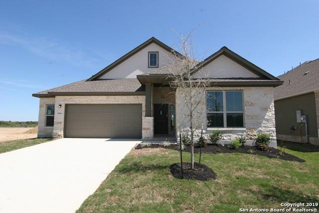 29646 Elkhorn Ridge, Fair Oaks Ranch, TX 78015 (MLS #1382120) :: BHGRE HomeCity