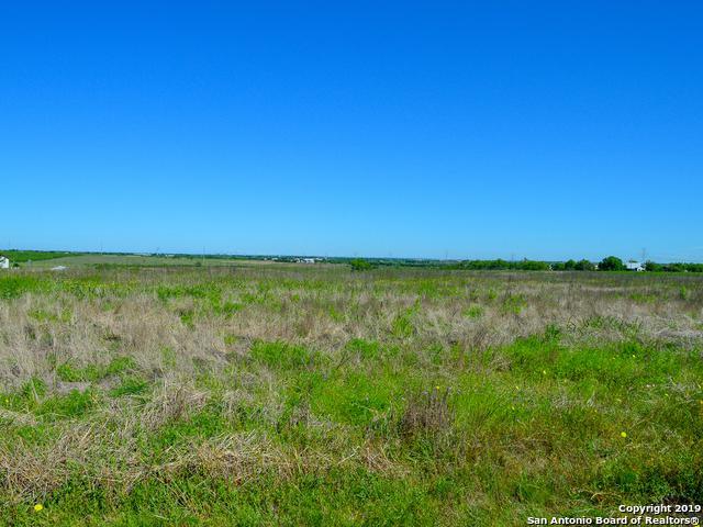 1640 Wosnig Rd, Marion, TX 78214 (MLS #1382515) :: Erin Caraway Group