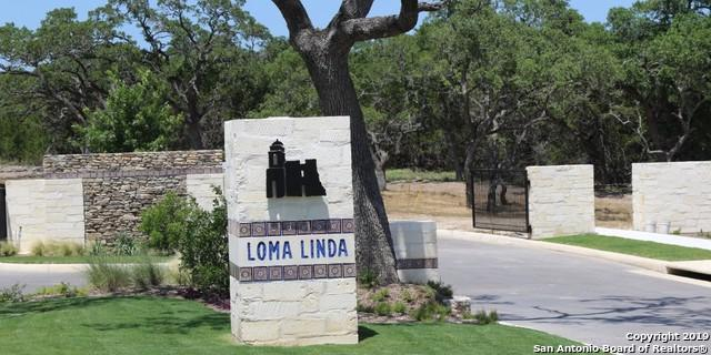 110 Lajitas, Boerne, TX 78006 (MLS #1382866) :: Exquisite Properties, LLC