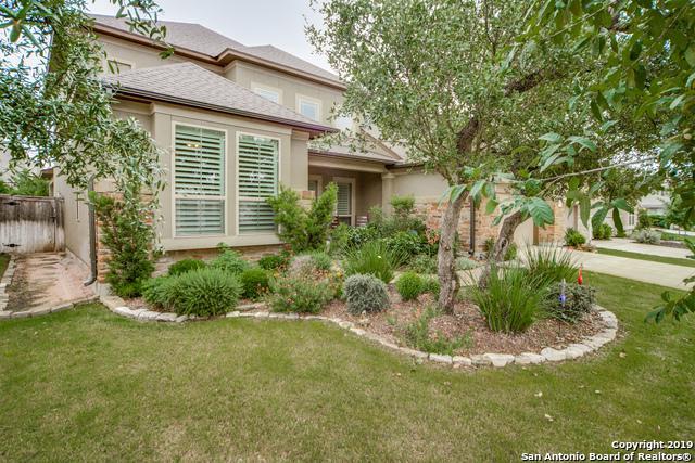18714 Beardsley Cove, San Antonio, TX 78258 (MLS #1383165) :: Tom White Group
