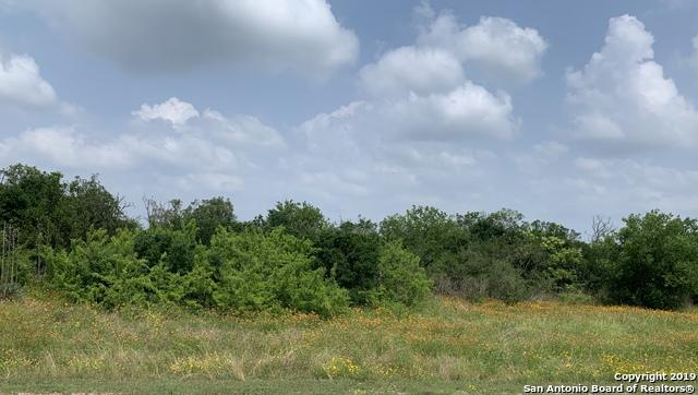 13322 Roundup Pass, San Antonio, TX 78245 (MLS #1383336) :: The Glover Homes & Land Group