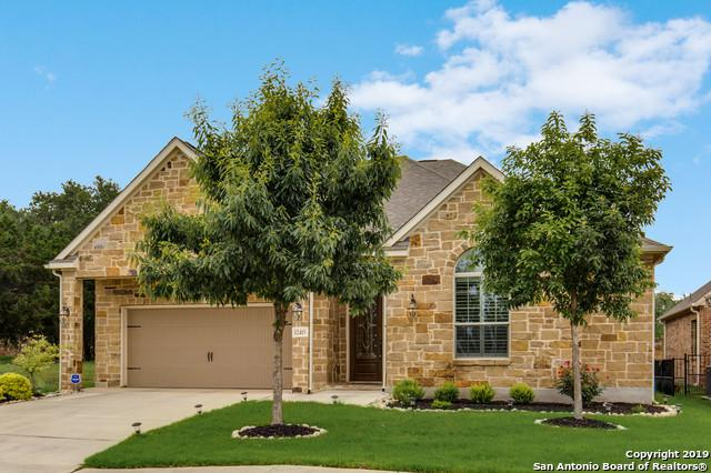12415 Desert Palm, San Antonio, TX 78253 (MLS #1383349) :: Alexis Weigand Real Estate Group