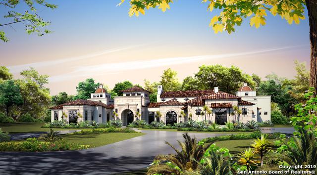 21321 Babcock Rd, San Antonio, TX 78255 (#1383405) :: The Perry Henderson Group at Berkshire Hathaway Texas Realty