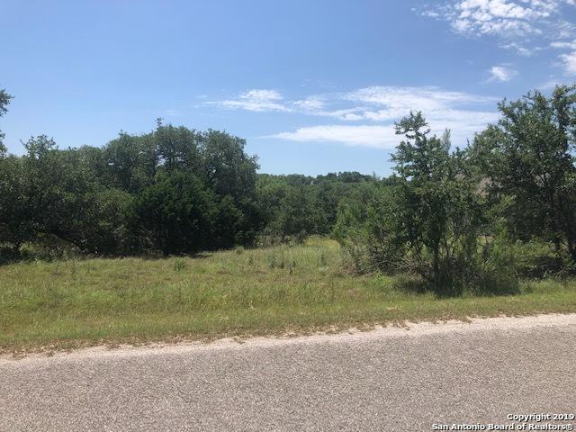 1080 Bridlewood, New Braunfels, TX 78132 (MLS #1383493) :: Erin Caraway Group