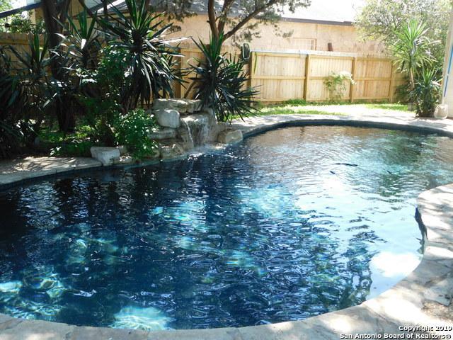 4702 Shavano Bark, San Antonio, TX 78230 (MLS #1383506) :: Alexis Weigand Real Estate Group