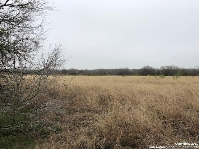 TBD Brite Lane, Poteet, TX 78065 (MLS #1383718) :: Alexis Weigand Real Estate Group