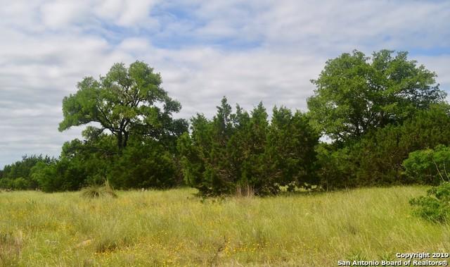1710 Cordillera Trce, Boerne, TX 78006 (MLS #1383720) :: Berkshire Hathaway HomeServices Don Johnson, REALTORS®