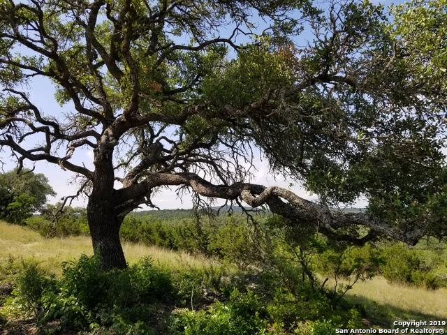 LOT 24 Canyon Rim Private Road, Helotes, TX 78023 (MLS #1383910) :: Alexis Weigand Real Estate Group