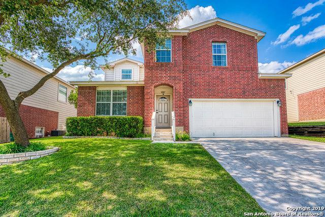 3007 Arkansas Oak, San Antonio, TX 78223 (MLS #1383994) :: Alexis Weigand Real Estate Group