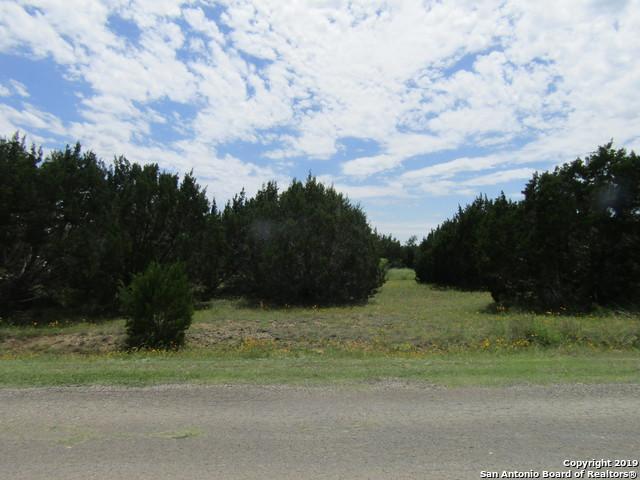 TBD Rust Ranch Rd, Blanco, TX 78606 (MLS #1384081) :: NewHomePrograms.com LLC