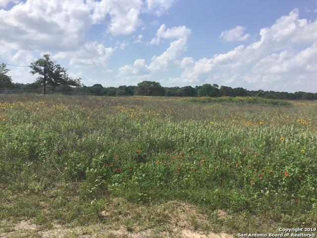 126 Ranch Country Dr, La Vernia, TX 78121 (MLS #1384294) :: Alexis Weigand Real Estate Group