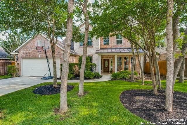 519 Cypress Trail, San Antonio, TX 78256 (MLS #1384627) :: Santos and Sandberg