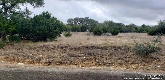 LOT 937 Jesse Stiff, Blanco, TX 78606 (MLS #1384839) :: Exquisite Properties, LLC