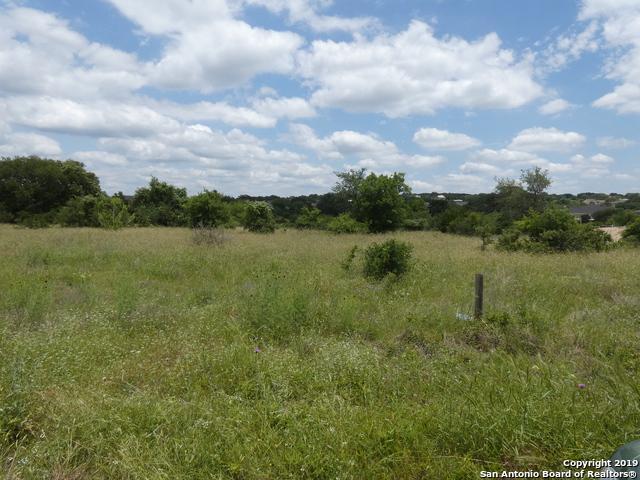1228 Merlot, New Braunfels, TX 78132 (MLS #1384882) :: The Gradiz Group