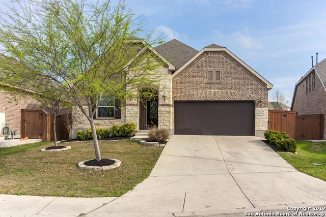 12315 Pecos Valley, San Antonio, TX 78254 (MLS #1384888) :: Erin Caraway Group