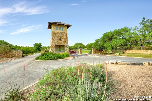 2220 Cascada Pkwy, Spring Branch, TX 78070 (MLS #1385000) :: ForSaleSanAntonioHomes.com