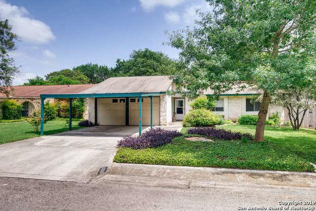 3930 Briarvalley St, San Antonio, TX 78247 (MLS #1385034) :: The Gradiz Group